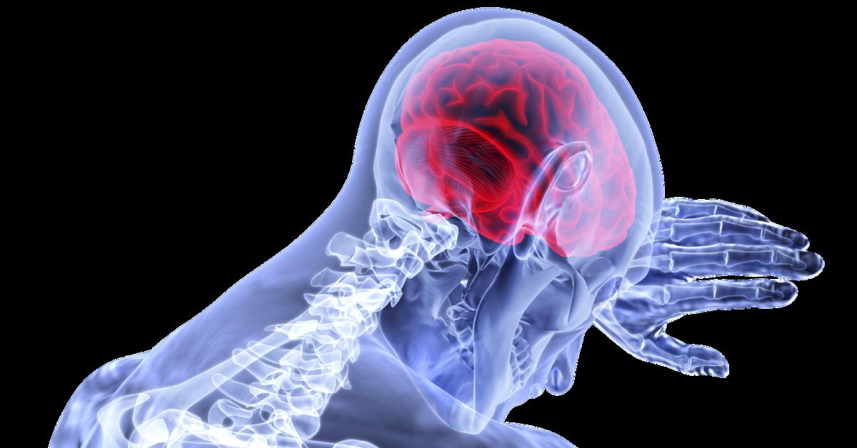 suplementy z omega-3 łagodzą stany zapalne w mózgu